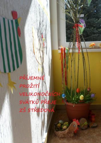 SAM_2954